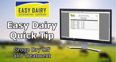 Easy Dairy Quick Tip - Group Dry Off and Treatment